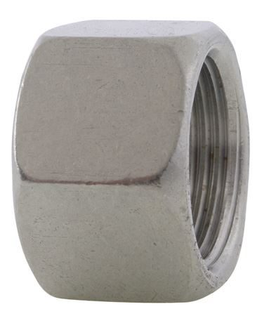 BSPP-Threaded-Hex-Cap-150LB-316-Stainless-Steel